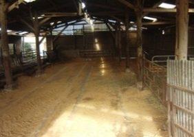 Anlage eines Erdwärmetauschers unter strohausgelegter Fläche – Rinderzuchtfarm